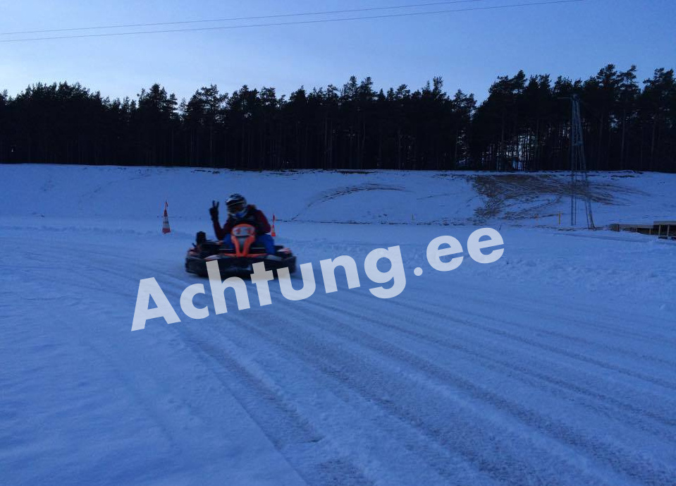ice carting stag activities